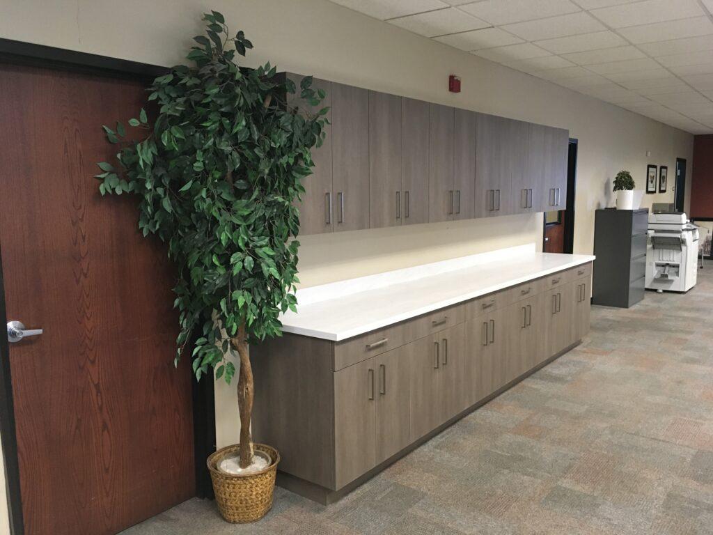 Iris Construction Services - Markham, IL